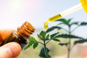 CBD Oil for OCD